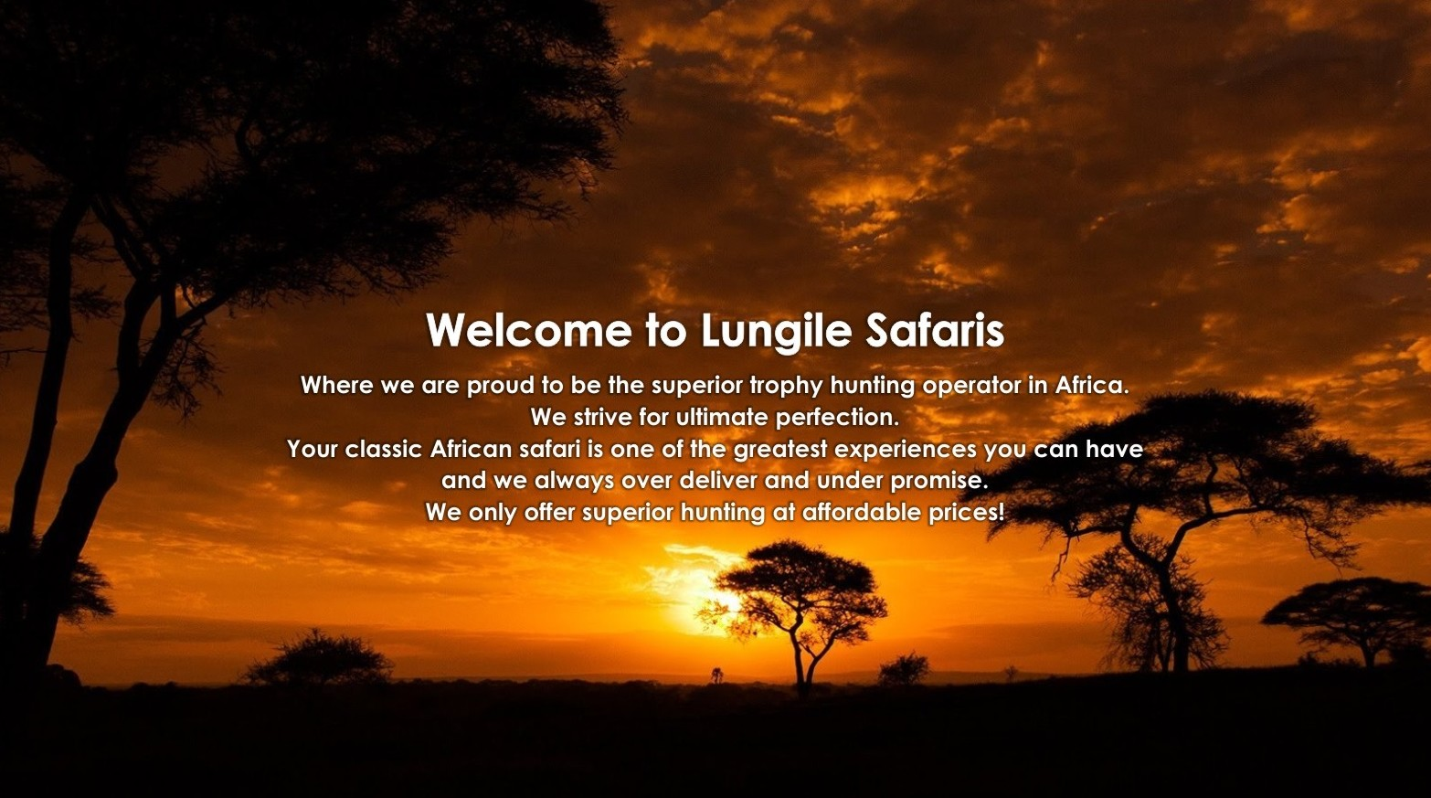 Lungile Safaris Blog