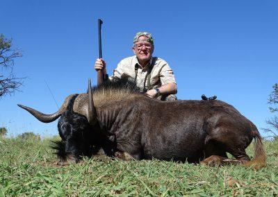 Black Wildebeest (19)