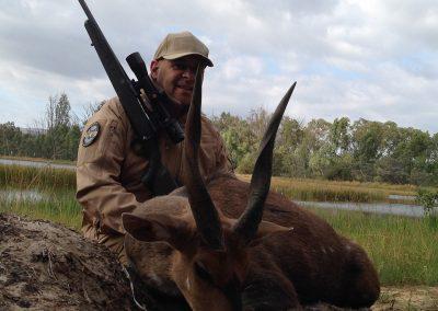 Bushbuck (3)