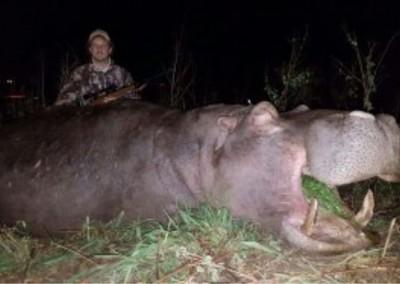 Lungile Safaris Hippo (2)