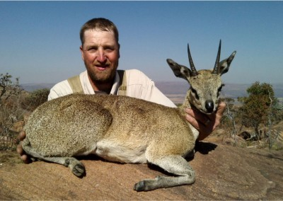 Lungile Safaris Klinspringer (2)