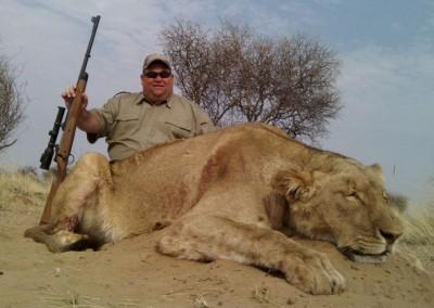 Lungile Safaris Lion (2)