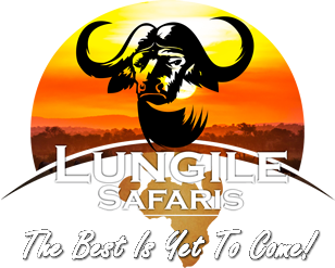 Lungile Safaris