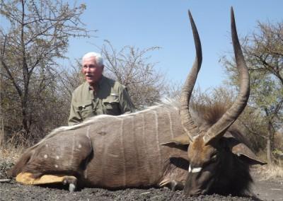 Lungile Safaris Nyala (3)