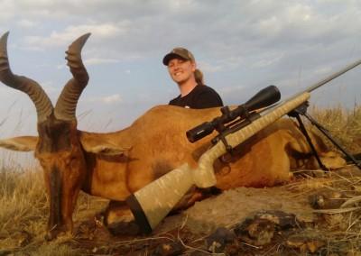 Lungile Safaris Red Hartebeest (3)