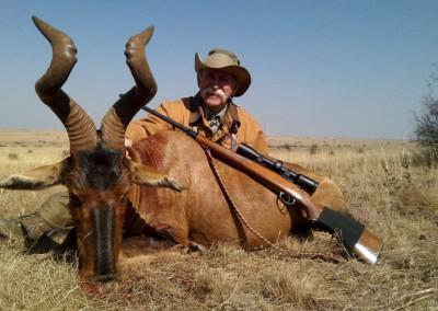 Lungile Safaris Red Hartebeest (5)