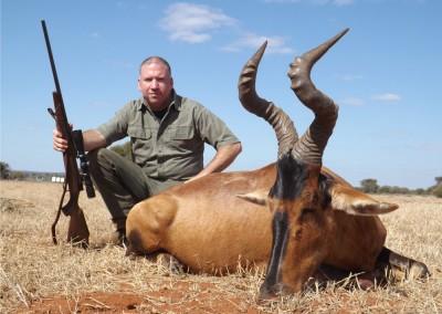 Lungile Safaris Red Hartebeest (6)
