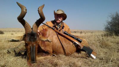 Lungile Safaris Red Hartebeest