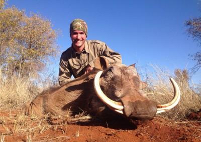 Lungile Safaris Warthog (11)