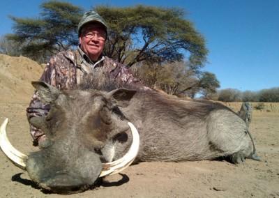 Lungile Safaris Warthog (17)