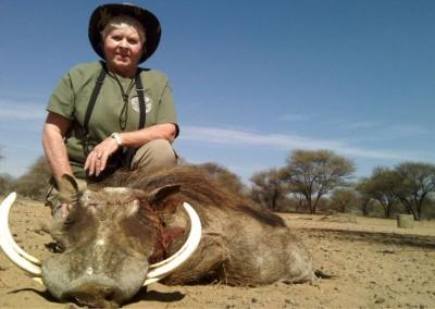 Lungile Safaris Warthog (19)