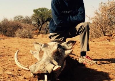Lungile Safaris Warthog (20)