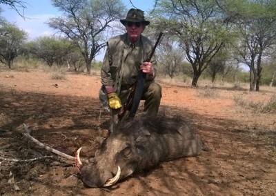 Lungile Safaris Warthog (7)