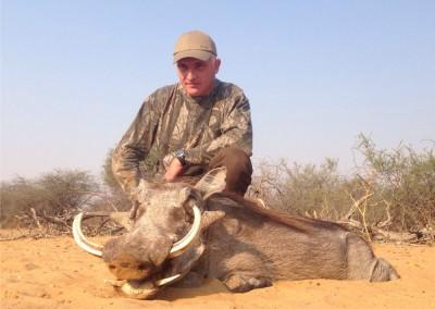 Lungile Safaris Warthog (8)