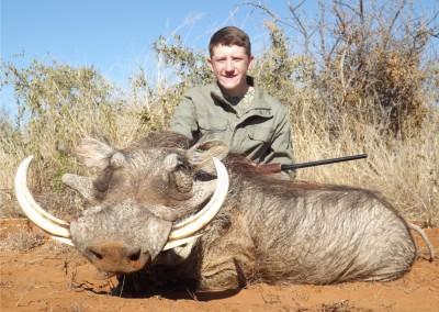 Lungile Safaris Warthog (9)