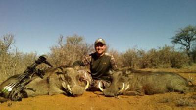 Lungile Safaris Warthog