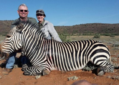 Lungile Safaris Zebra (10)