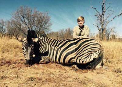 Lungile Safaris Zebra (20)