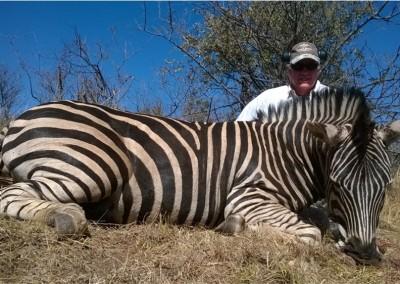 Lungile Safaris Zebra (3)