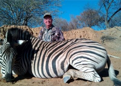 Lungile Safaris Zebra (4)