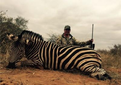 Lungile Safaris Zebra (7)