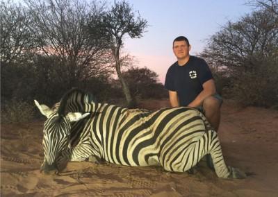 Lungile Safaris Zebra (8)